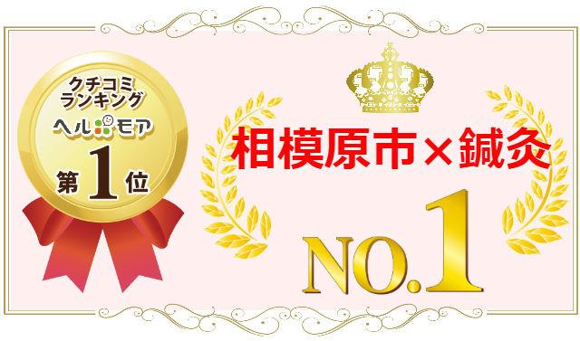 相模原×鍼灸NO.1
